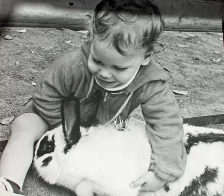 andy:giant rabbit