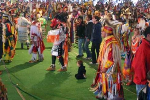 standing buffalo powwow