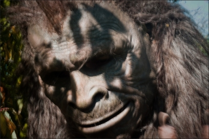 close-up sasquatch