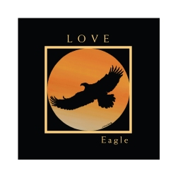 eagleflag copy 2