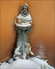st francis snow