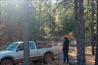 jody wood 2