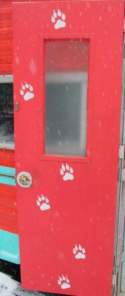 wolf prints:trailer