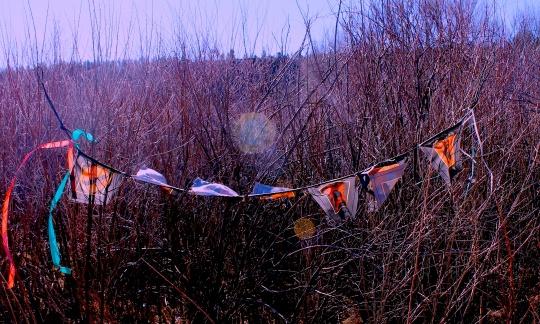 prayer flags far out