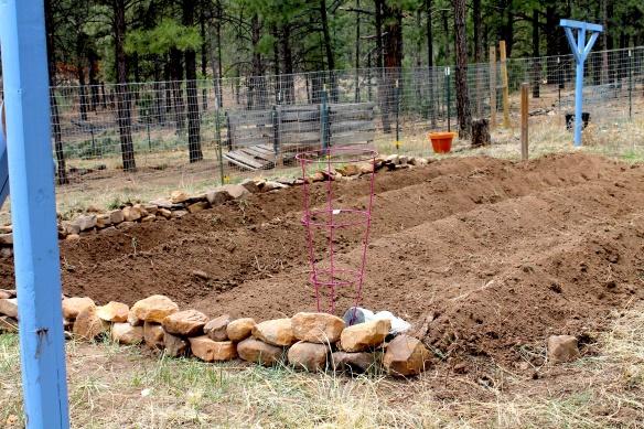 garden mounds.jpg