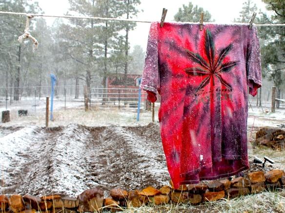 marijuana t:snow