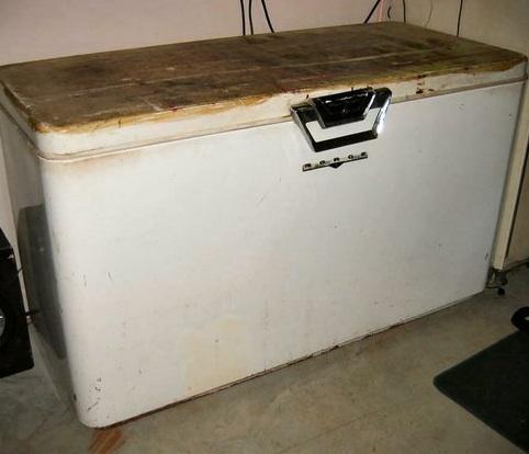 chest-freezer-21008-005