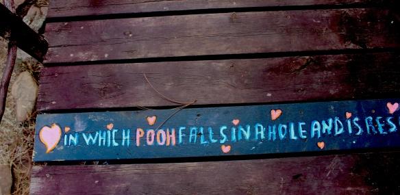pooh falls 3